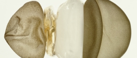 Silicon breast implant and components / Abb. Ilona Gaynor